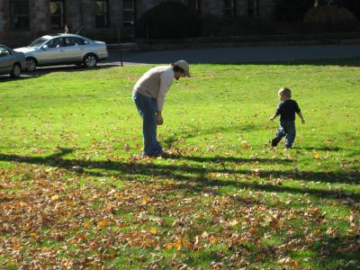 Playing with Leaves